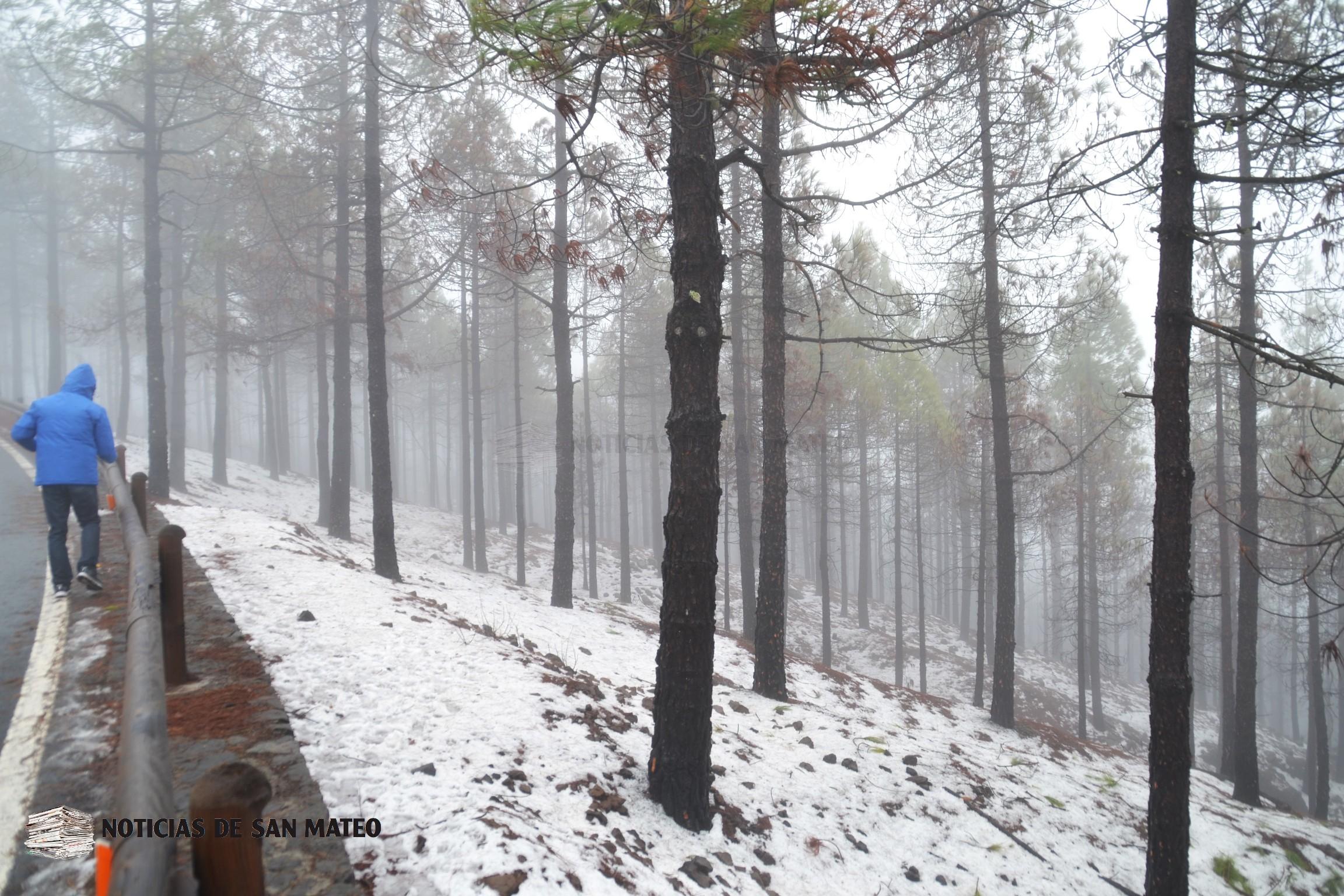 Nieve en Cumbre Gran Canaria Foto Laura Miranda Noticias de San Mateo 9 febrero 20181