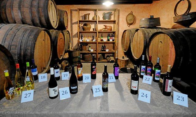 vinos cata 2016