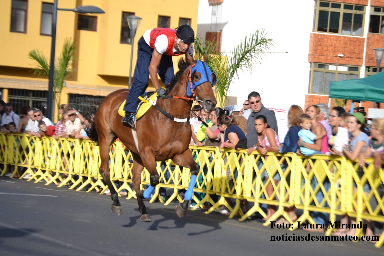 Carrera caballos avda tinamar